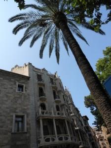 palma-le-case-centro-storico