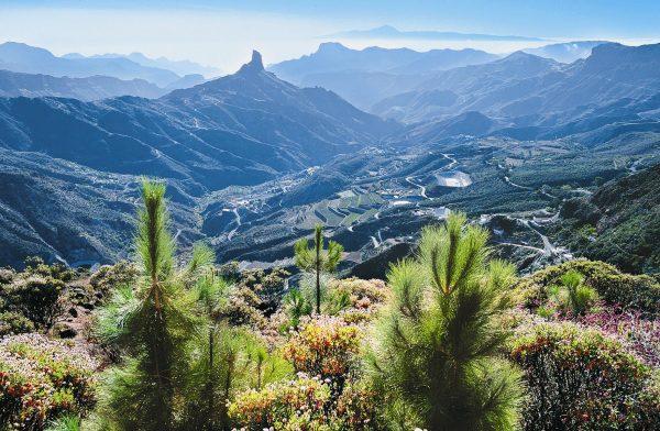 viaggio alle isole Canarie