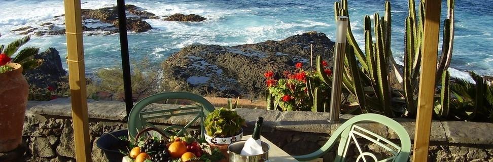 Tenerife-costa-saladaTerraza3