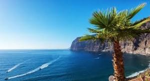 tenerife-mare-palme